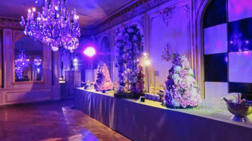 Canal + Versailles pour Logistic Events